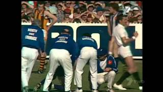 VFL 1978 Grand Final   Hawthorn vs Nth Melbourne
