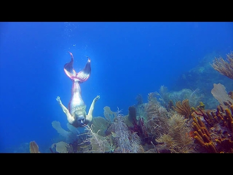 Une vraie sirène en Guadeloupe - Real mermaid in Guadeloupe