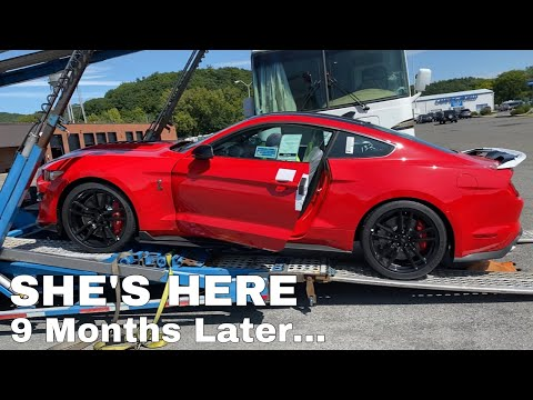 Taking Delivery of my 2020 Shelby GT500!