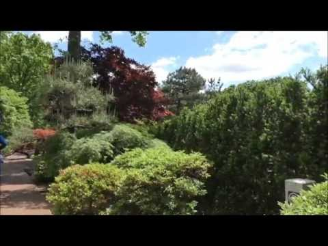 Missouri Botanical Temperate House and Tram Tour 2016