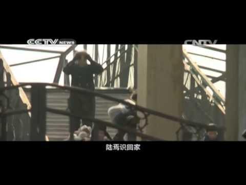 Zhang Yimou on history & movies