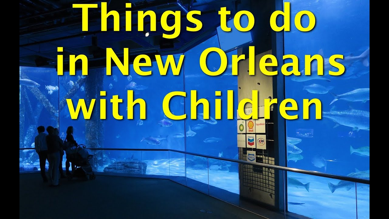 Things to do in new orleans with children visit the for Things not to miss in new orleans