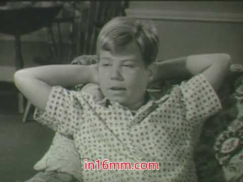 My Three Sons  ABC   1960's black and white classic tv