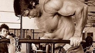 Смотреть видео мышцы на брусьях видео