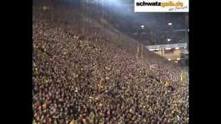 Болельщики FC Borussia Dortmund