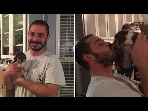 Marine Veteran Gets Christmas Puppy Surprise