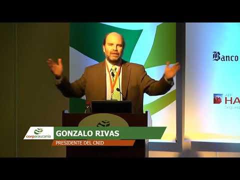 Gonzalo Rivas, Presidente CNID: Innovación y Ciencia