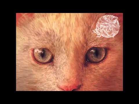 Coyu - Balls (Original Mix)