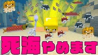 UUUMゲームパーティーこちらから申し込んでね! https://www.uuum.jp/po...