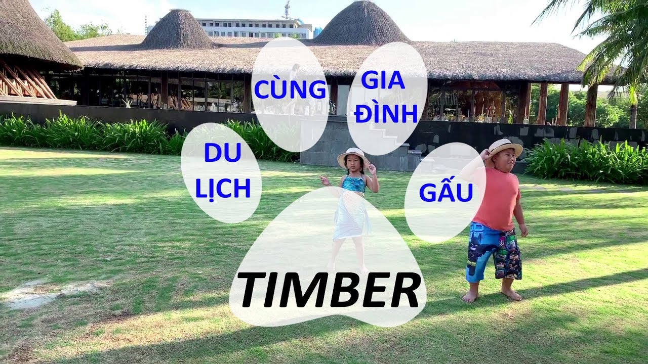Du lịch mùa hè – Nhảy cùng Gia Đình Gấu – Timber