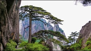中國黃山 Mount Huangshan, China / Yellow Mountain / The most beautiful mountain in China
