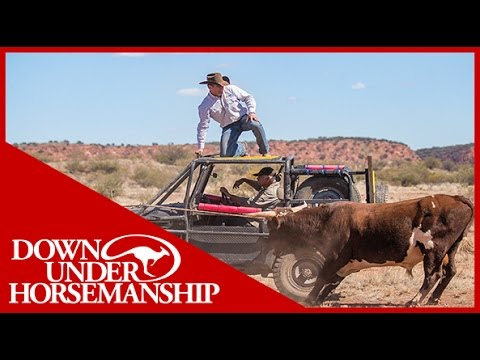 Clinton Anderson - Outback Adventure 4 of 14