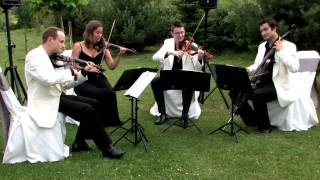 Video Oasis 'Whatever' - Strelitzia String Quartet download MP3, 3GP, MP4, WEBM, AVI, FLV Juni 2018