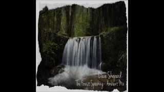 Dave Shepard The Forest Speaking Ambient Mix