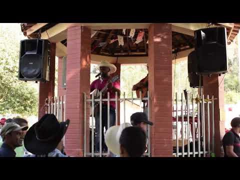 10º Festa Do Carro De Boi Em Dom Viçoso (Grama), Ervália/MG - SHOW NA PRAÇA
