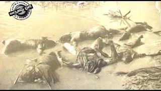 Diviseema Tragedy 19 11 12 2