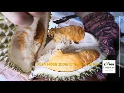 JJ Vege - 100% Organic Durian Xiao Hong