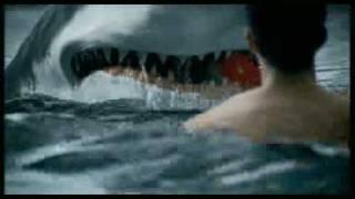 jugando con mi tiburon