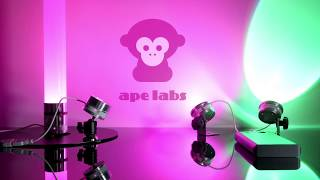 Ape Labs - ApeCoin and Accessories