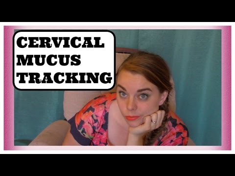 how-to-track-ovualtion-using-cervical-mucus