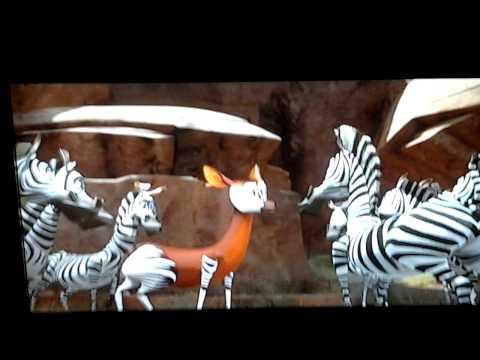 Okapi in Madly Madagascar
