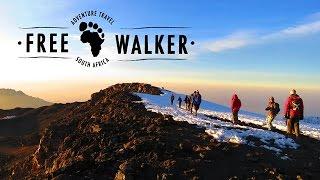 Mount Kilimanjaro conquered (Lemosho to Uhuru Peak, Tanzania, Africa)