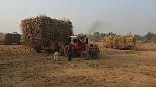 New 2018 Tractor with load trolley video M.B.Din