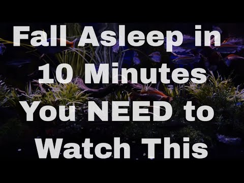 THE BEST Sleep Aid : The Insomnia Key fall asleep fast
