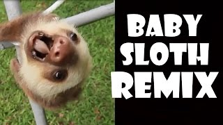 Screaming Baby Sloth - Remix Compilation