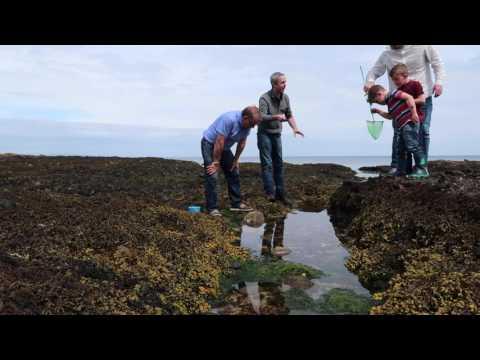 Dji phantom 4 and Rock pool fishing in Waterfoot Co. Antrim N.Ireland