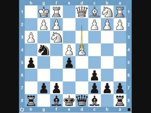 Chess Traps- Fishing Pole