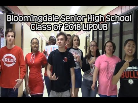 Bloomingdale HS Senior Lipdub 2018
