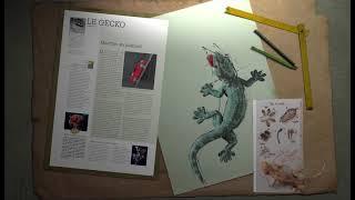20 ans, histoire d'un livre : Biomimétisme, quand la nature inspire la science