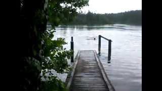 Глубелька - группа Голубых озер в Беларуси(http://netbu.ru/ Милое и привлекательное озеро в парке Нарочанский - отличное место для отдыха и туризма! http://netbu.ru/, 2012-08-09T10:03:43.000Z)