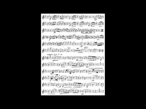 Richard Strauss Horn Concerto No. 1 Midi Accompaniment (mvt 1&2)