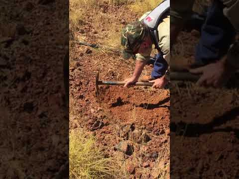 Conglomerate Exploration Finds Gold Nugget