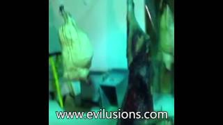 Evilusions commercial January 2015