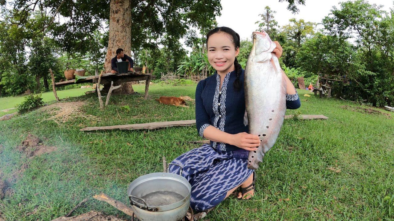 ลาบปลาตองตัวใหญ่กินข้าวเที่ยงกับครอบครัว ລາບປາຕອງໃຫຍ່ກິນກັບຄອບຄົວ
