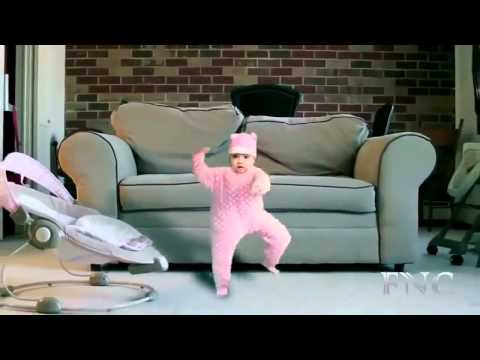 Смешно танцуют коты и кошки - YouTube