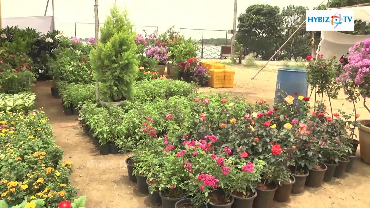 Garden Plants U0026 Flowers   Horticulture U0026 Agriculture Show 2016   Hybiz    YouTube