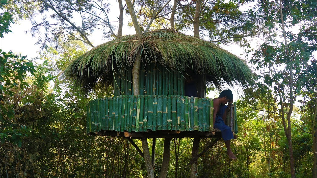 Build Tree Hut in forest