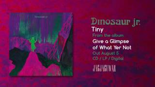 Dinosaur Jr  - Tiny (Official Audio)
