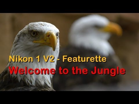 Nikon 1 V2 - Featurette - Jungle Parque Tenerife - Full HD 1080p