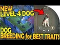 NEW LEVEL 4 DOG - DOG BREEDING for BEST TRAITS - Last Day On Earth Survival 1.7.12 Update