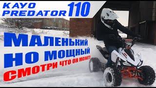 Квадроцикл KAYO PREDATOR 110 | Квадроцикл | Kayo 2021 | Видео-презентация | Rockot-Motors