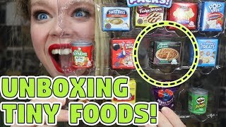 PART 2! Whats Inside these Tiny Real Foods?! - Mystery UNBOXING