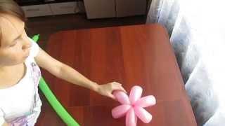 видео Ромашка из шариков своими руками