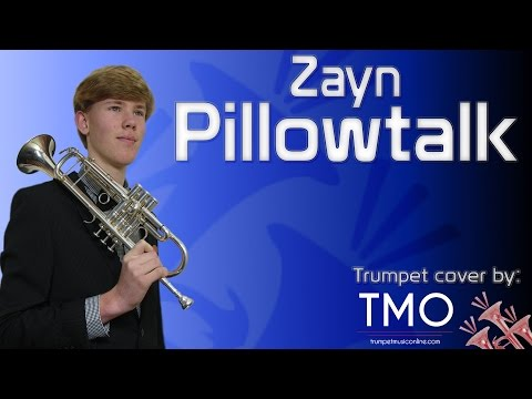 Zayn - Pillowtalk (TMO Cover)