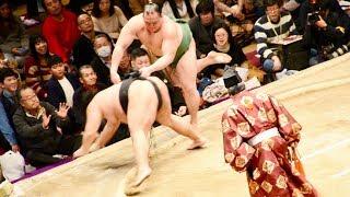 2018.02.11日本大相撲トーナメント第四十二回大会②OB戦①若荒雄(不知火親...