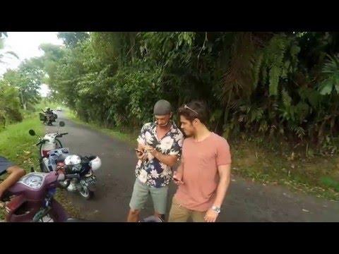 Medoc In Bali